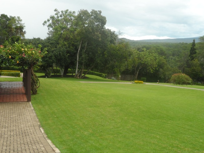 The grounds at the lodge.