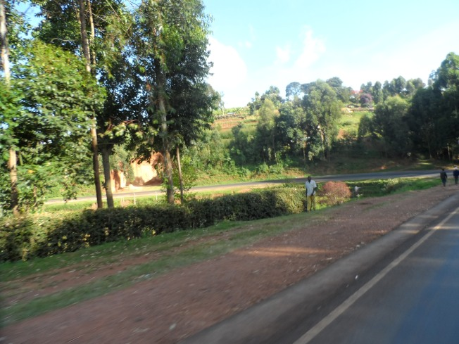 The road between Bomet and Kisii is full of such sharp turns.... But this one took the crown.