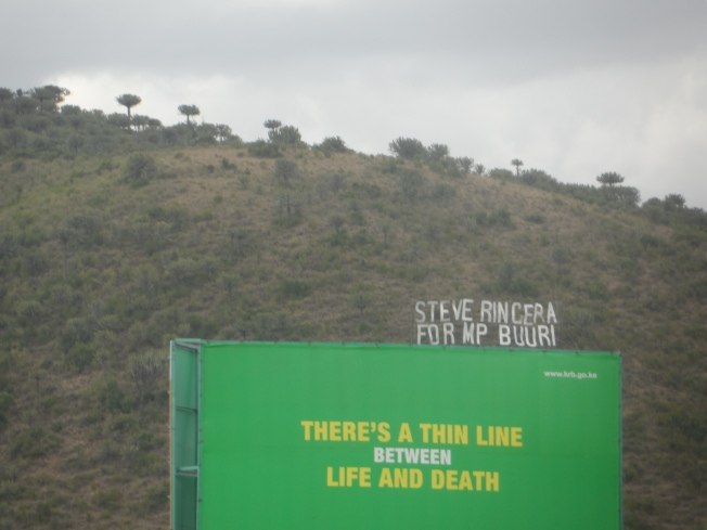 A close up of the 'Hollywood Sign' - STEVE RINGERA FOR MP BUURI