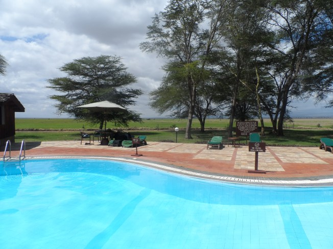 Swimming pool facing mount Kilimanjaro.... The water was cold!!
