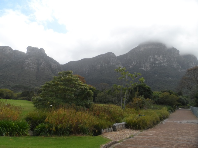 Another view of the mountains from the gardens
