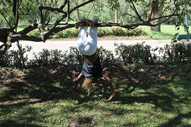 Hanging upside down.....